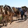555 Sahara Desert, Tunisia