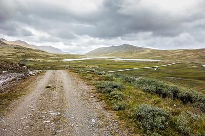 Ringveien, Dovrefjell