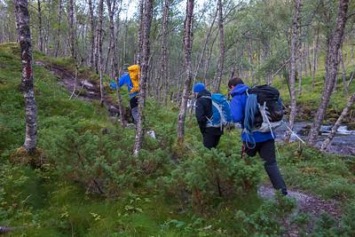 Første del av oppstigningen går gjennom skogen, langs Storelva
