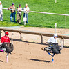 Turf Paradise Camel and Ostrich Races 23 March 2013 - 31-2