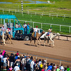 Turf Paradise Camel and Ostrich Races 23 March 2013 - 27-2