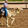 Turf Paradise Camel and Ostrich Races 23 March 2013 - 30-2