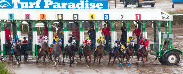 Turf Paradise Opening Day October 17 2015 007