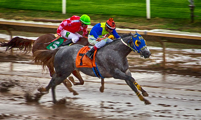 Turf Paradise Opening Day October 17 2015 009_HDR