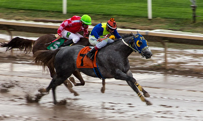 Turf Paradise Opening Day October 17 2015 009