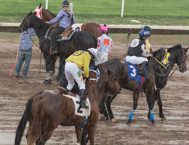 Turf Paradise Opening Day October 17 2015 004