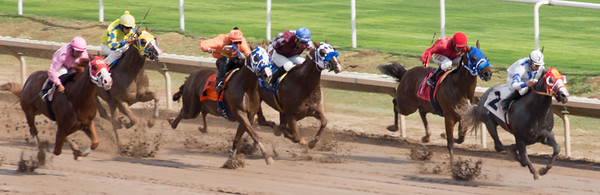 Turf Paradise Opening Day October 17 2015 014