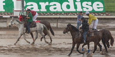 Turf Paradise Opening Day October 17 2015 006