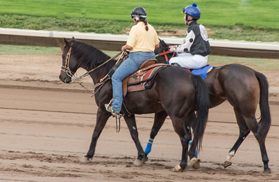 Turf Paradise Opening Day October 17 2015 002