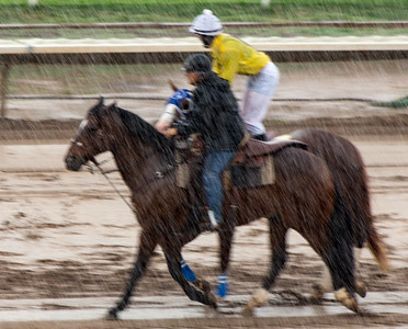 Turf Paradise Opening Day October 17 2015 005