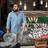 Fresh fish under the Galata Bridge, Istanbul