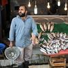 Fresh fish under the Galata Bridge, Istanbul