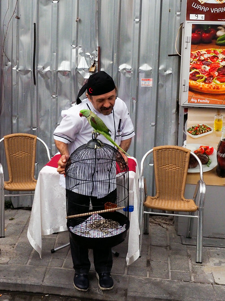 Chef with parrot, Sultanahmet, Istanbul