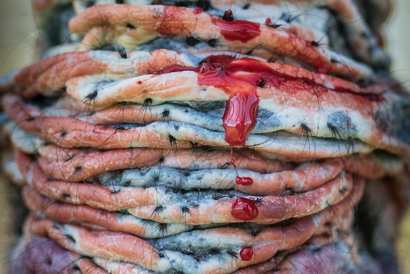 Not Blueberry Pancakes