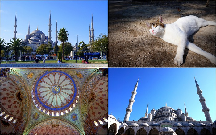 Visiting the Blue Mosque in Istanbul, Turkey.