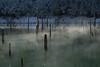Primordial, Sülüklü Göl, Bolu
