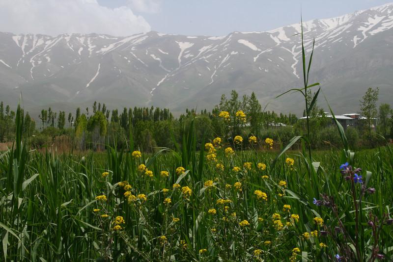 Mountains, Van, Turkey
