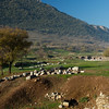 Ephesus_2012 12_4495115