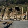 Ephesus_2012 12_4495118