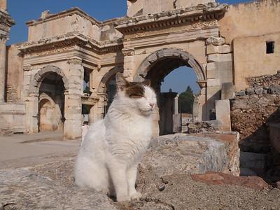 Ephesus in Turkey. Photo: Martin Bager.
