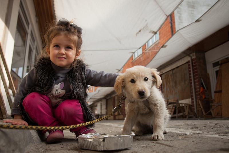 Best friends, Iznik, Turkey