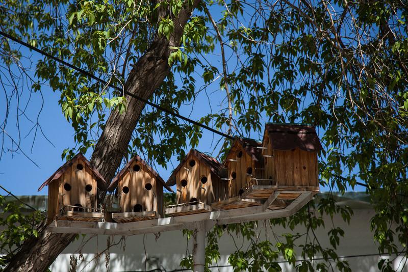 Bird houses, Kars, Turkey