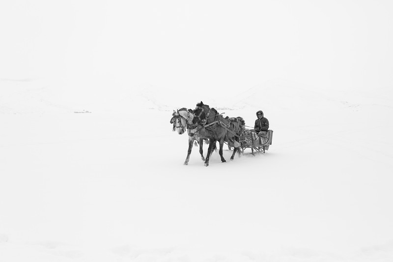 Horse carriage, Çıldır Lake, Turkey