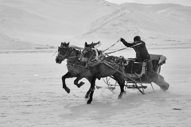 Racing sleigh, Çildir Gölü, Kars, Turkey