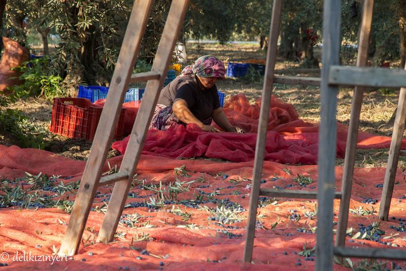 Cleaning out debris, Iznik, Turkey