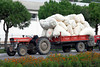Trailor loads of bales of cotton on the streets of Pergamum, Turkey, Eurasia.