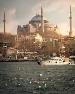 mosque new