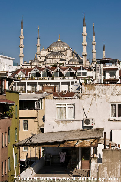 The Blue Mosque complex included structures of social and cultural significance.