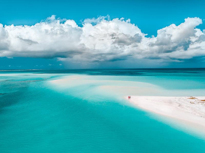 Paradise Perfection