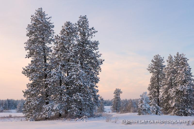 Winter Solstice Eve