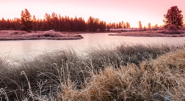 Frozen Pine Lake