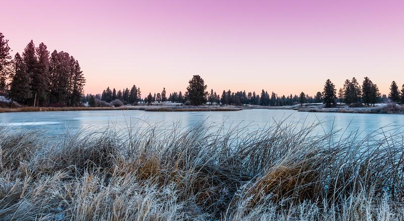 Pine Lake Winter