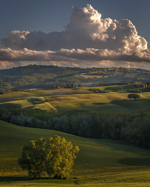 Evening Sun – Val d'Orcia, Tuscany