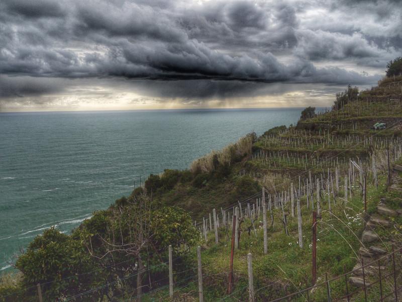 Devilish vineyards.