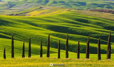 Val d'Orcia | Tuscany | Italy