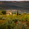 Autumn Cottage in Vineyard in Montalcino