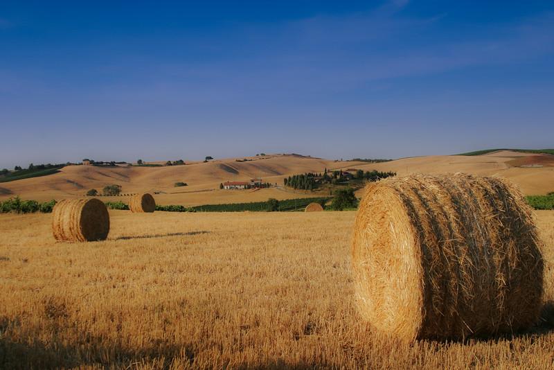 Tuscany Near Montalcino