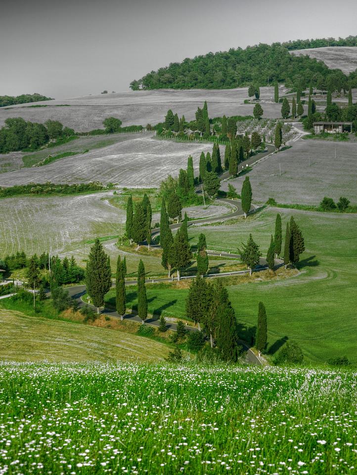 Winding Road; Monticchiello; Tuscany; Italy