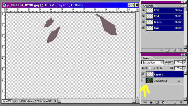 By shutting off the visibility of the background layer, we see here what we have painted on the new layer.  It is a good idea to look at this layer to make sure that no spot has been missed.  You can add to and erase the contents of this layer as needed.  You can mask it as well, if you like.