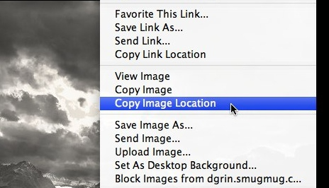 "Another way of getting the URL of your image is to right-click so that you get this pull-down menu. Select ""Copy Image Location"" and you're done.<br /> <br /> NOTE: Right-clicking won't work if you've disabled it in your gallery settings."