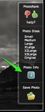 "<h2>Linking EXIF Data</h2>  To add the EXIF information, you've got to head back to SmugMug.  When you mouse over your image, you'll see a button for ""Photo Info.""  Click on that.  NOTE: make sure that you have ""Camera Info"" enabled in your custom gallery settings!"