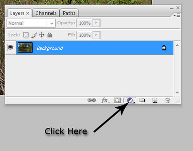Click the black and white <b>New Adjustment Layer</b> button on the bottom of the layers palette.