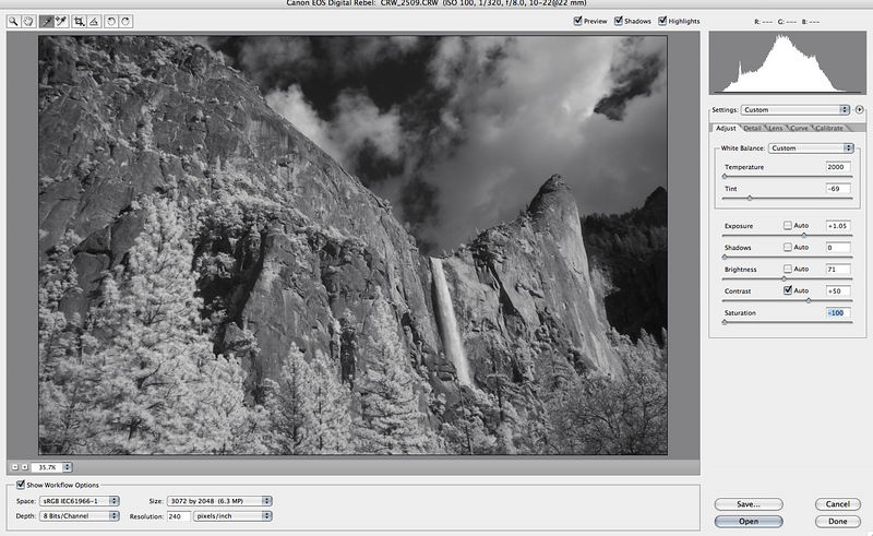You can now, if you wish, desaturate in RAW.  Or, you can leave it, and go B&W in Photoshop.