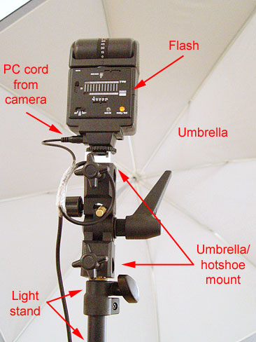 Next is the flash. Put the lightstand in the position you want it, connect the umbrella adapter to the light stand and then mount the flash to the umbrella adapter. You can also mount an umbrella if you want bounced light.