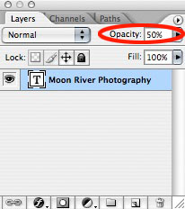 Next step: Opacity.  How prominent do you want your watermark to be?  In the Layers Palette, you can experiment with opactiy of the watermark, try reducing it to 50% - it will look VERY LIGHT on screen, because this is a transparent document.  Below you'll see examples at 100% and 50%.  Make a few versions of your watermark, with different opacities, and see which one best suits  you!