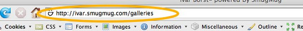 "LINKING TO CATEGORIES, OR USING THE  ""GALLERIES"" PAGE   If you are linking to a category, the web address will be something like: <i></i>http://nickname.smugmug.com/Galleryname  Remember that the gallery name is case sensitive. If the gallery name is made up of multiple words, the space between the words is replaced by an underscore.  If you are using the 'galleries page hack', such as described in the '<a href=""http://dgrin.smugmug.com/gallery/2160039"" target=""_blank"">site layout</a>', you can use the same thing, which will most likely be <i></i>http://nickname.smugmug.com/galleries    USING A CUSTOM DOMAIN  When using a custom domain, you can leave out the <i></i>http://nickname.smugmug.com part of the web address. In that case, the link used (see below) can be: /galleries for instance. That way the links will keep you on your custom domain."